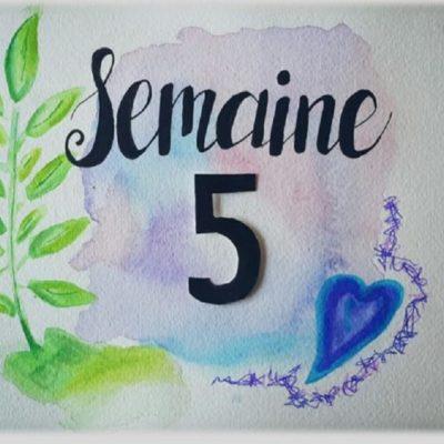 Semaine 5