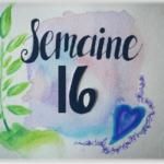Semaine 16
