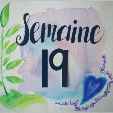 Semaine 19