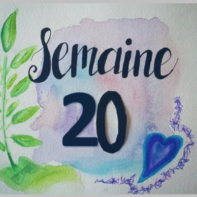 Semaine 20