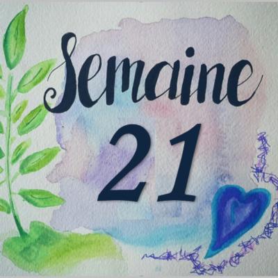 Semaine 21