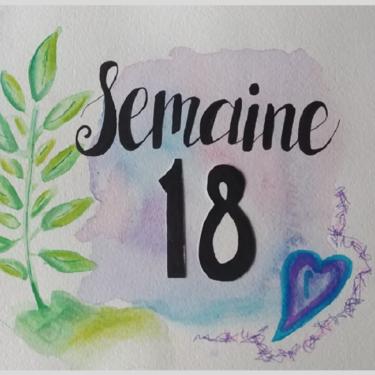 Semaine 18