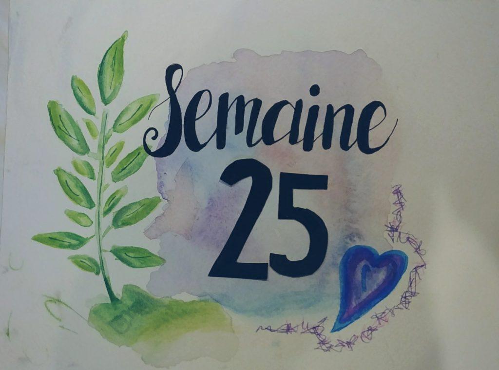 Semaine 25