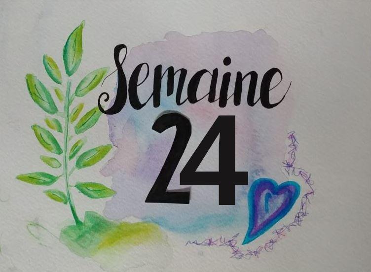 Semaine 24