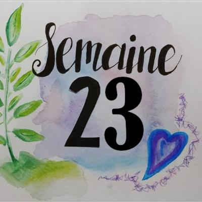 Smeaine 23