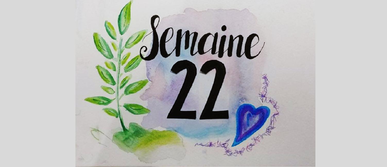 Semaine 22
