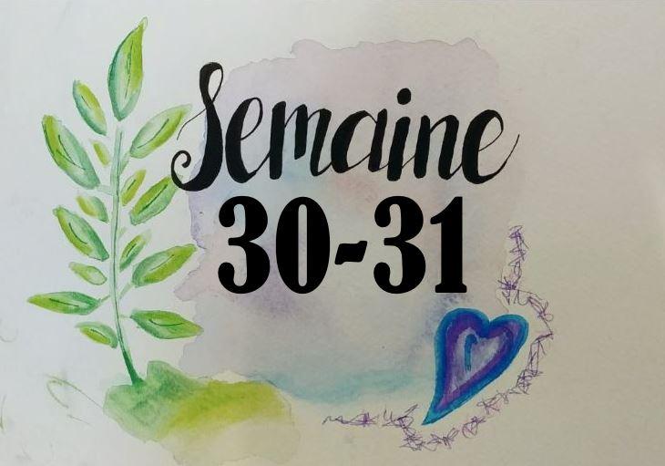 Semaine 30-31