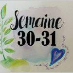 Semaines 30-31