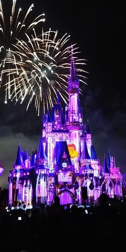 castle-disney-cinderella-night